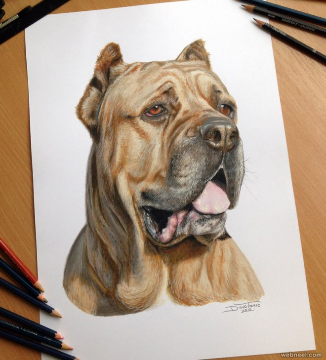 15 Realistic Dog Drawings And Artworks From Famous Artists