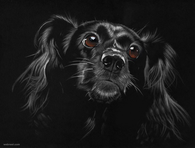 dog drawing by ilojleen