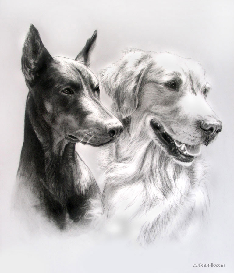 35 Beautiful Dog Drawings and Art works from top artists