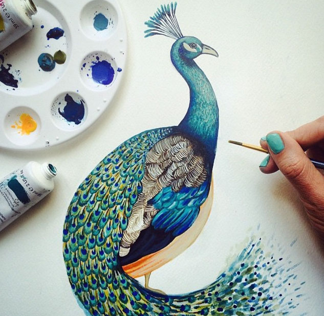 peacock painting by charlotte duffy