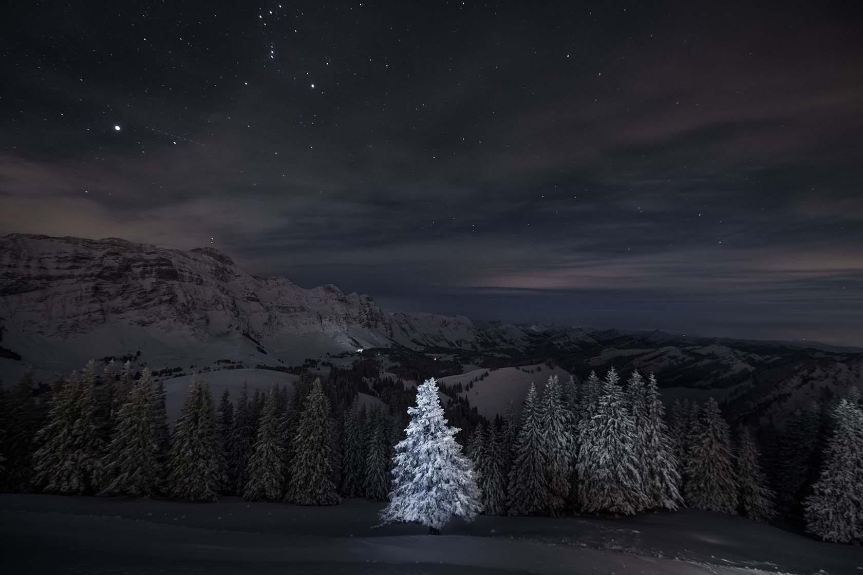 award winning sony world photography by sylvia michel