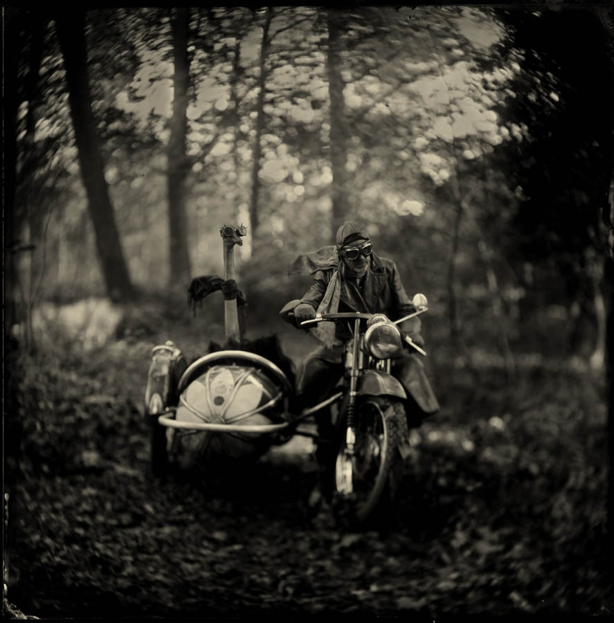 wild bunch monochrome photography by alex timmermans