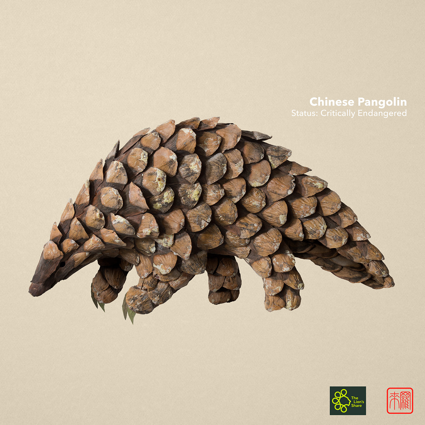 advertising ideas pangolin by raku inoue