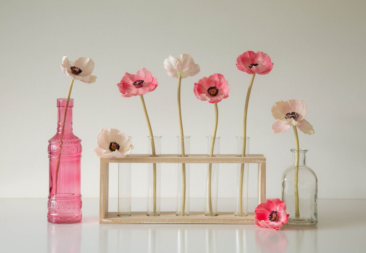 still life photography poppies