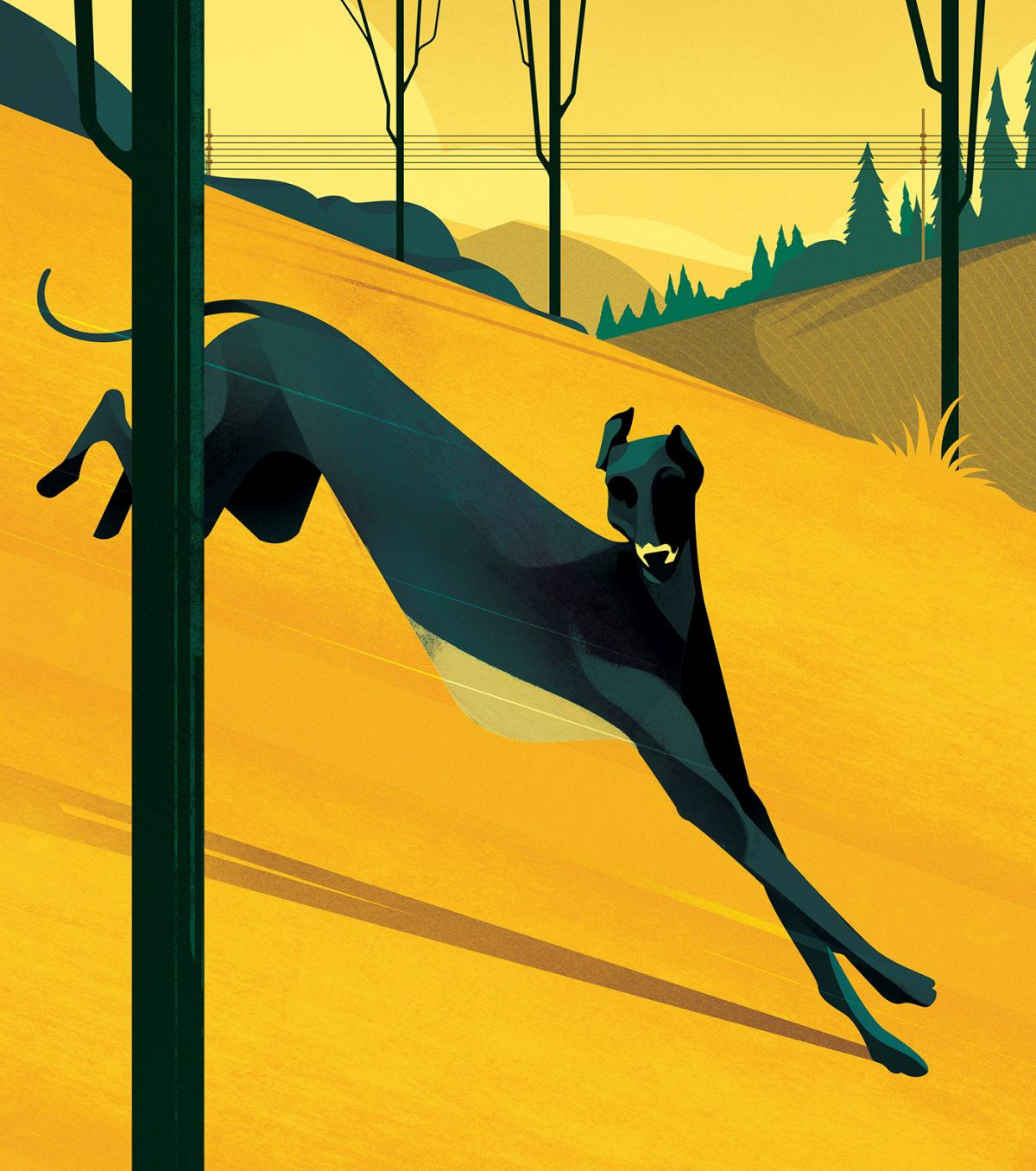 digital illustration editorial dog