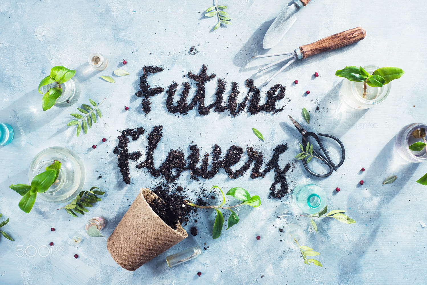 food art advertising idea photo manipulations future flowers by dina belenko