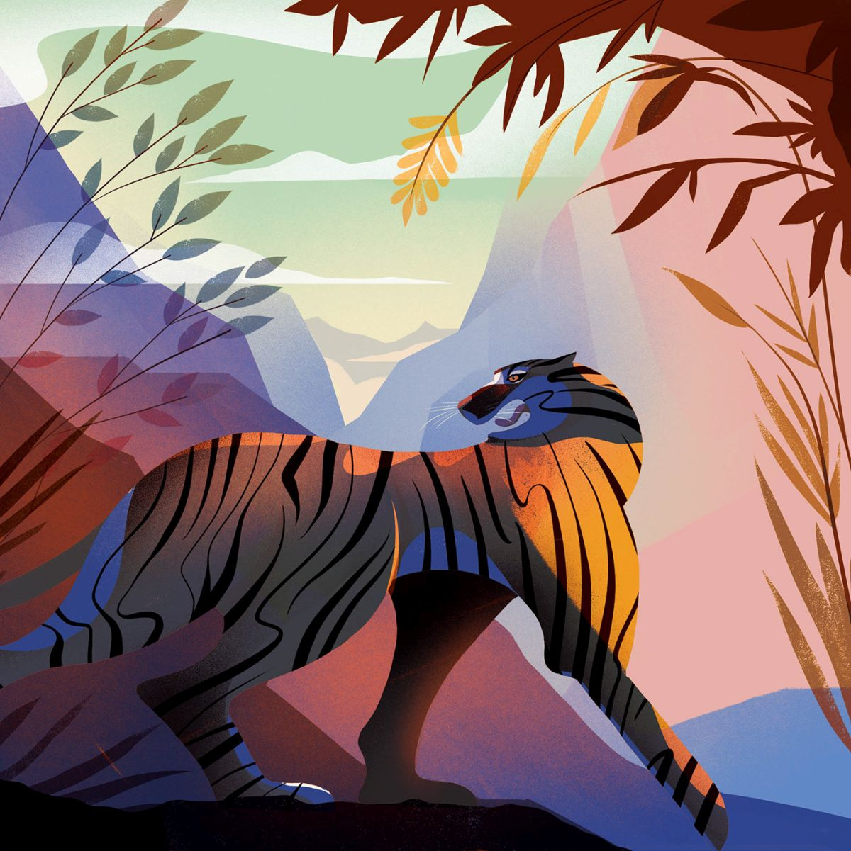 digital illustration editorial tiger