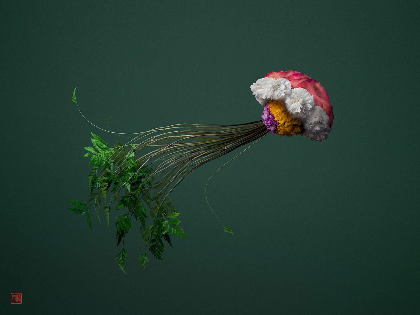 advertising ideas jellyfish