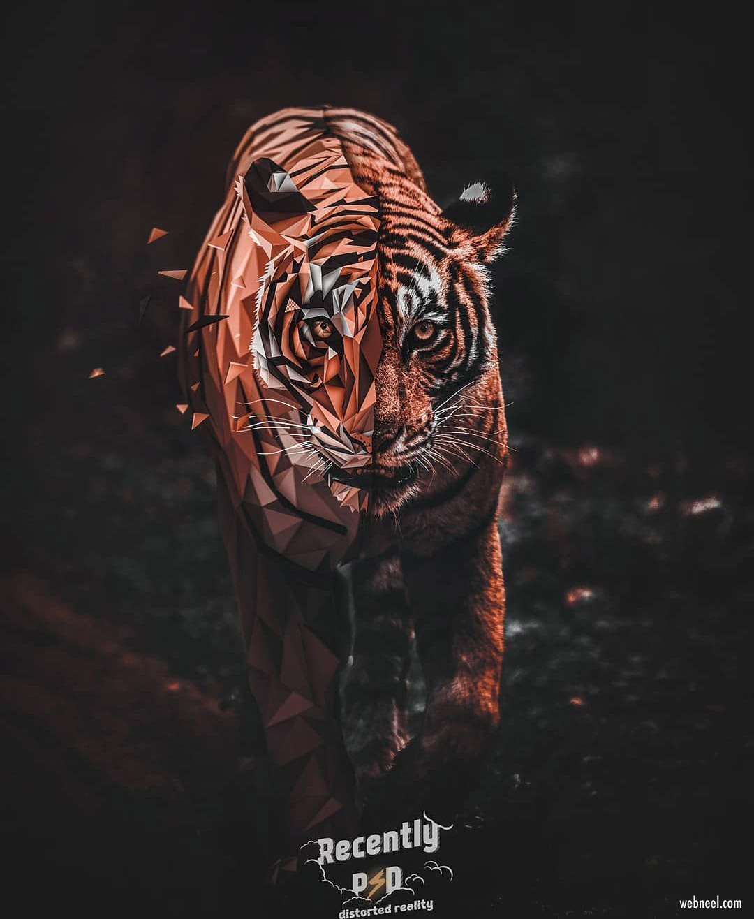 photo manipulation illustration distorted tiger by artem gusev