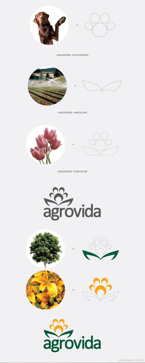 agrovida branding identity design