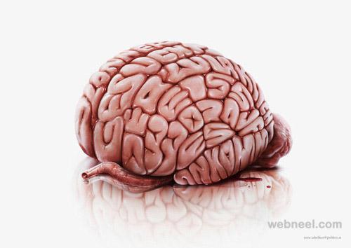 typography brain
