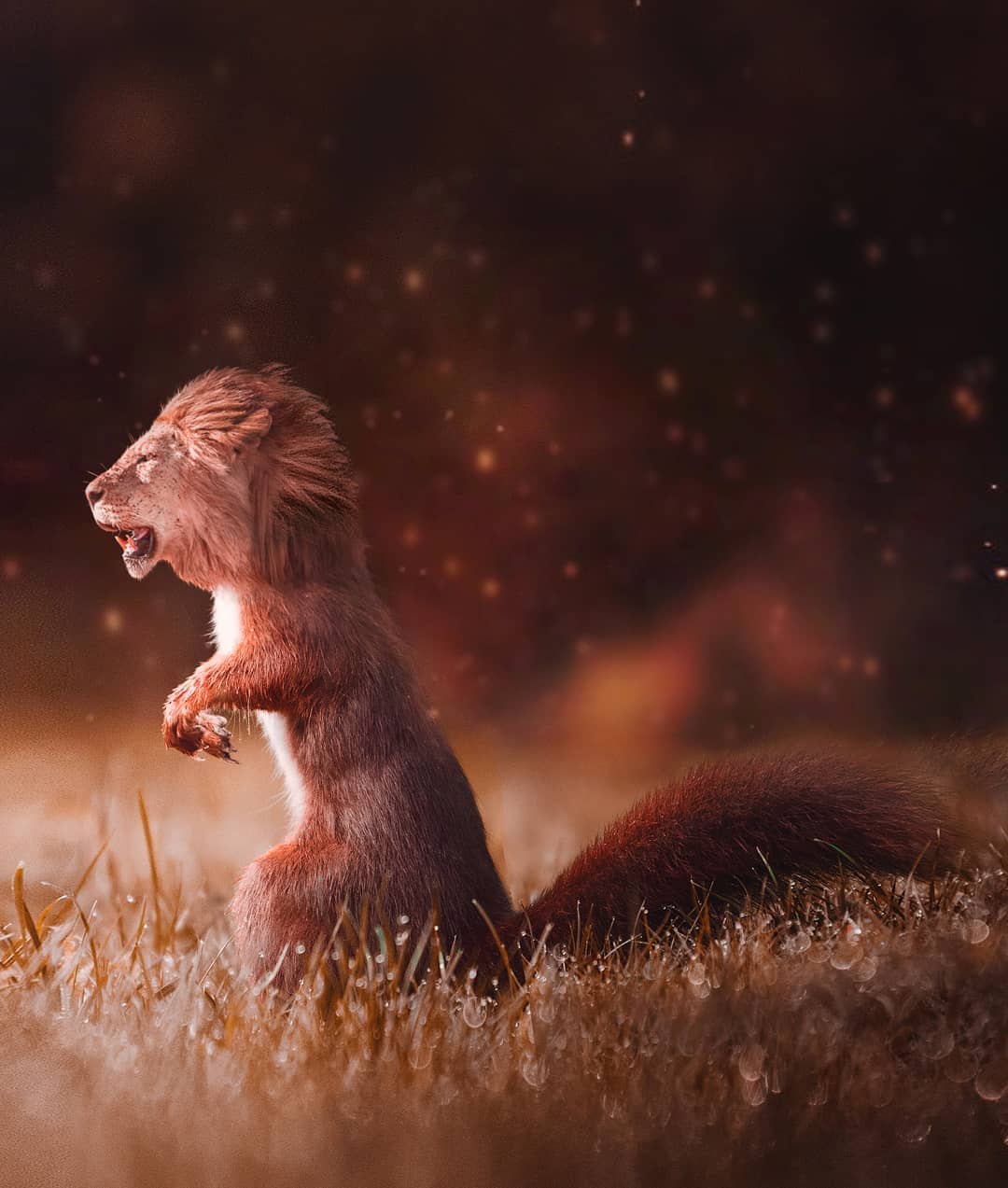 photomanipulation squirrel