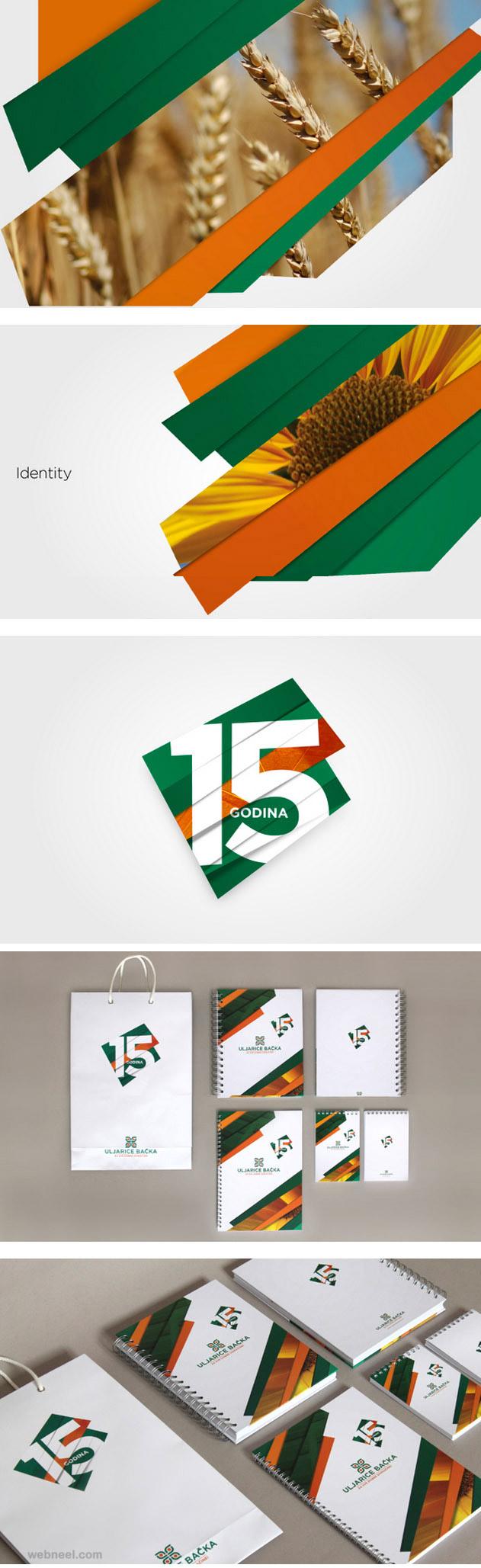 sunny agriculture branding identity design
