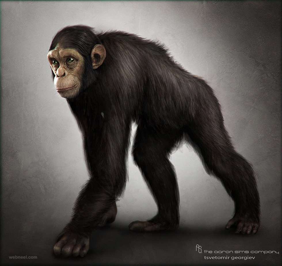 3d chimpanzee