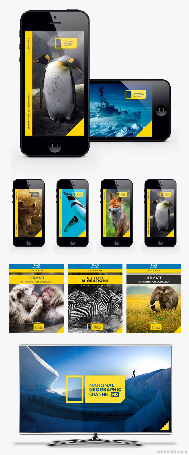national geographic best branding design