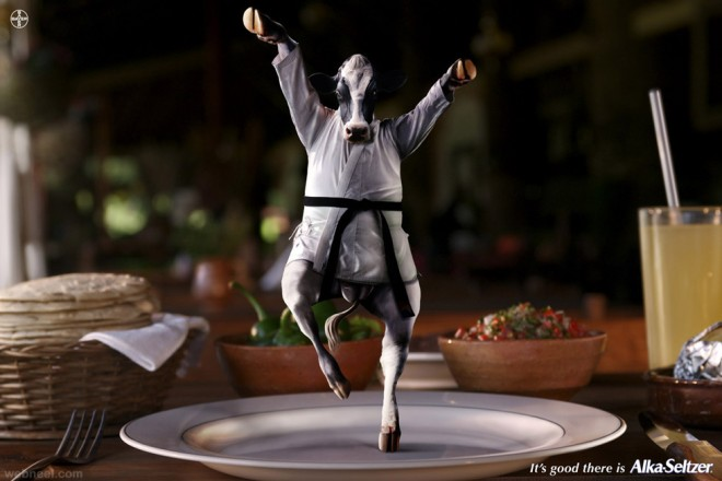 creative animal advertisement karate cow alka seltzer