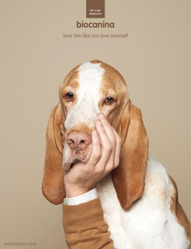 animal advertising design