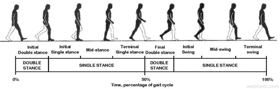 walk cycle man