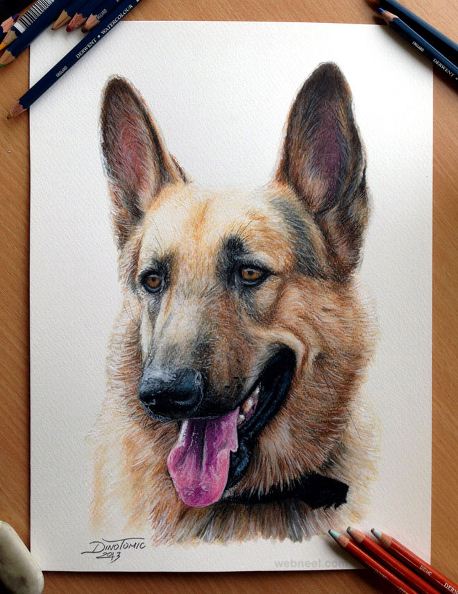 dog drawings animals dinotomic
