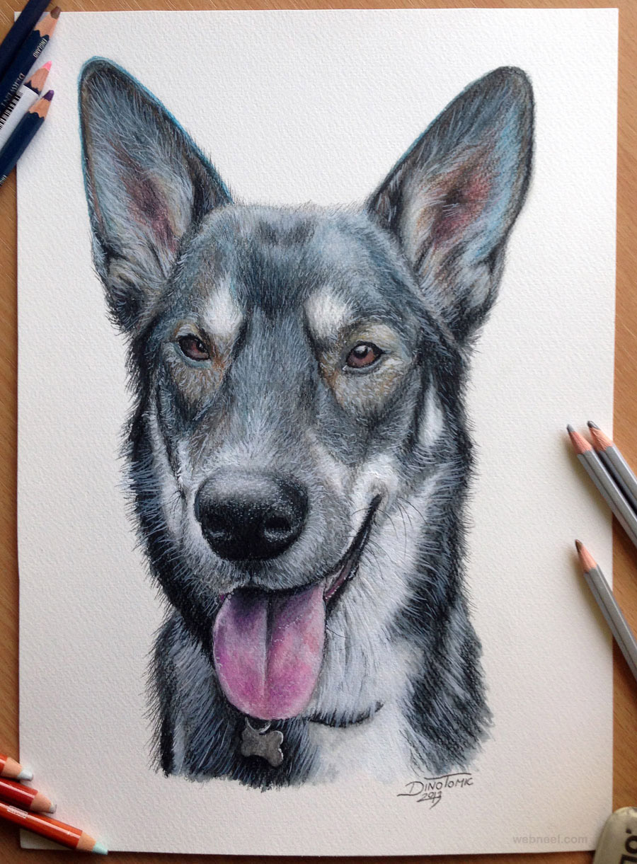 dog drawing animals dinotomic