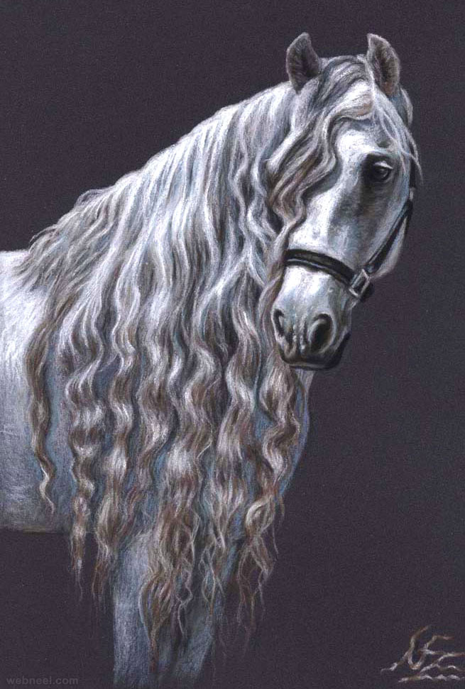 animal horse drawings