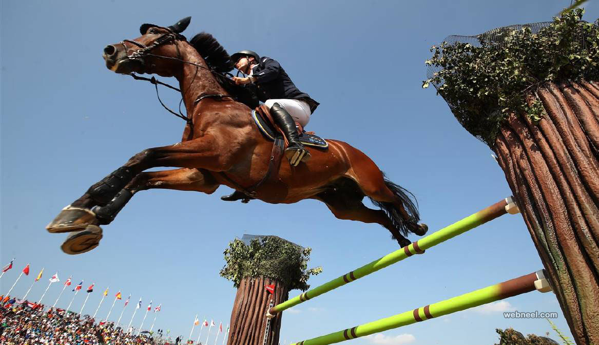 horse best rio olympic photography