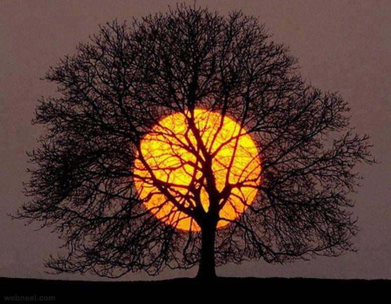 most amazing photos sunrise