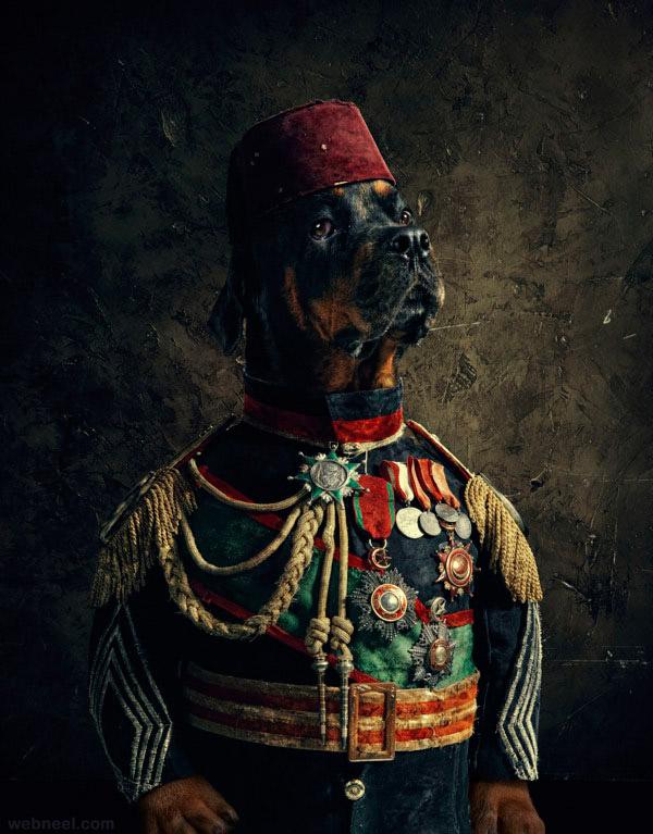 dog ad photo manipulation