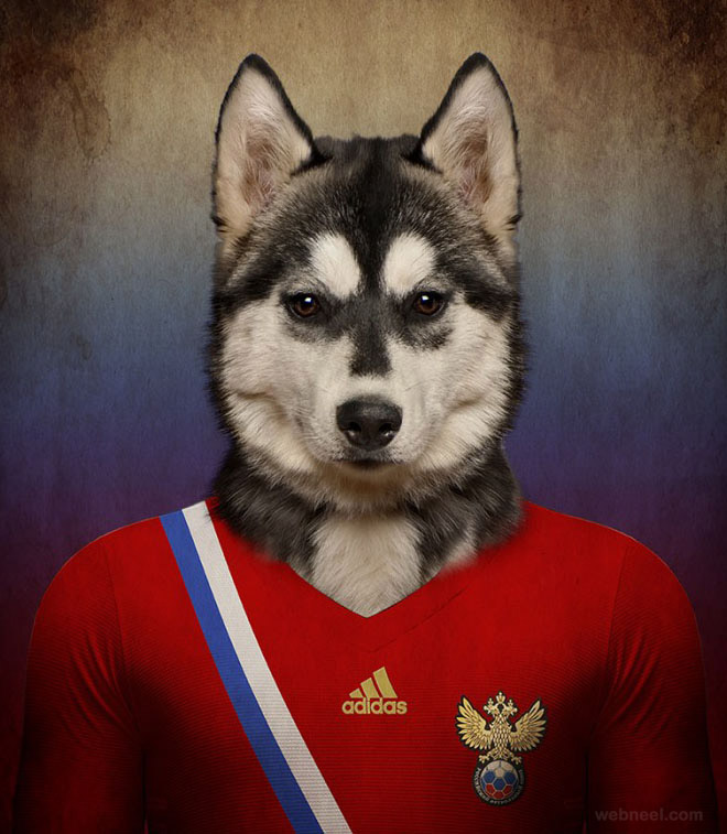 photo manipulation soccer nations dogs