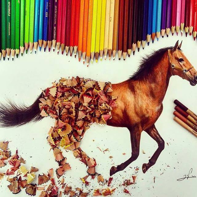 horse color pencil drawing