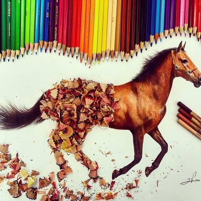 horse color pencil drawing