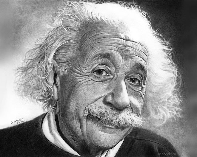 pencil drawing albert einstein celebrity by canavarro