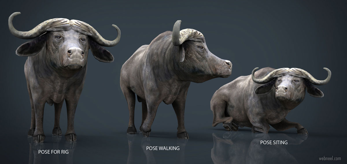 3d animal models characters by sanchiesp