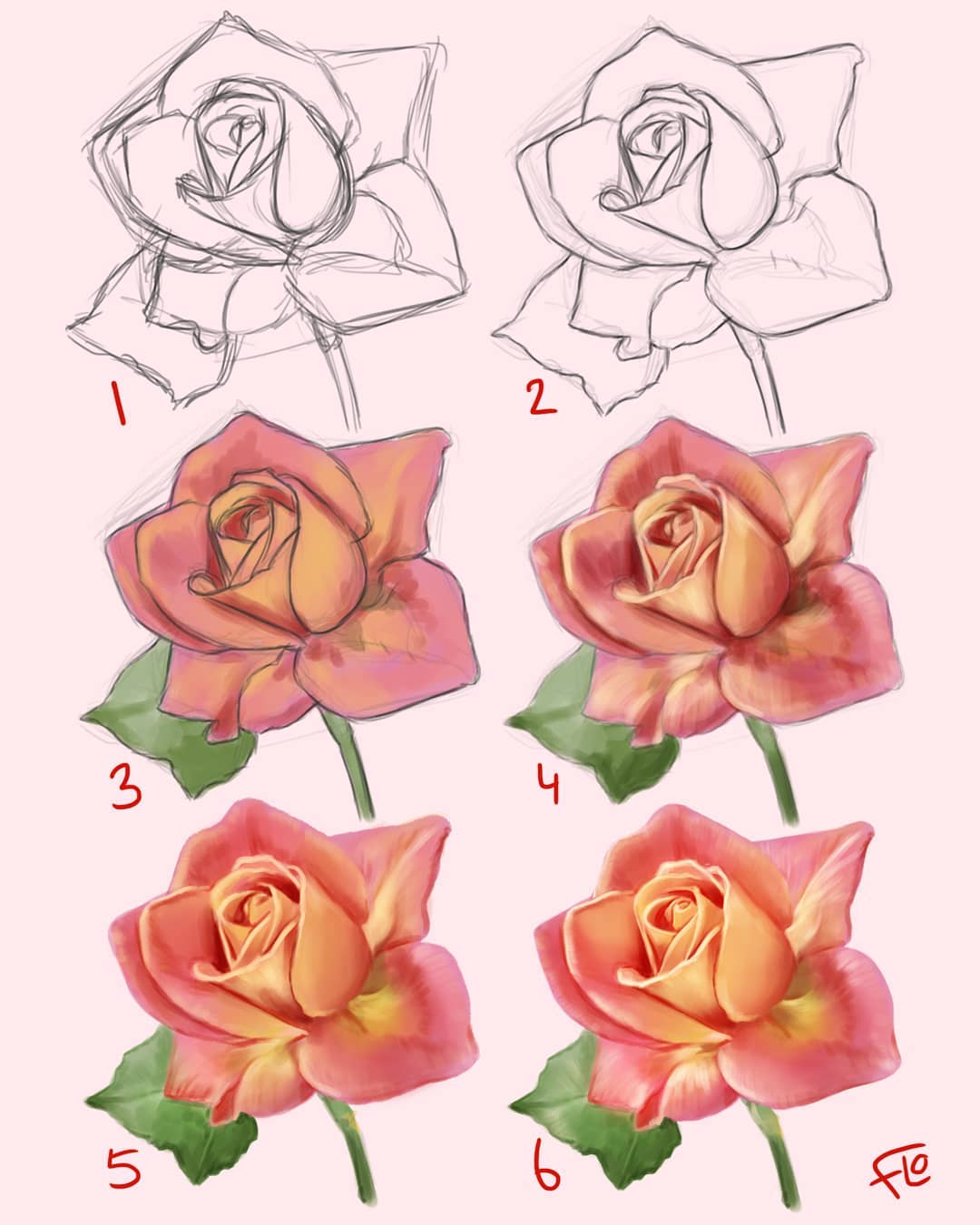 drawing rose step by step tutorial by flo