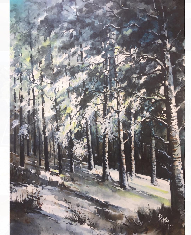 painting landscape scenary lost by adem potas