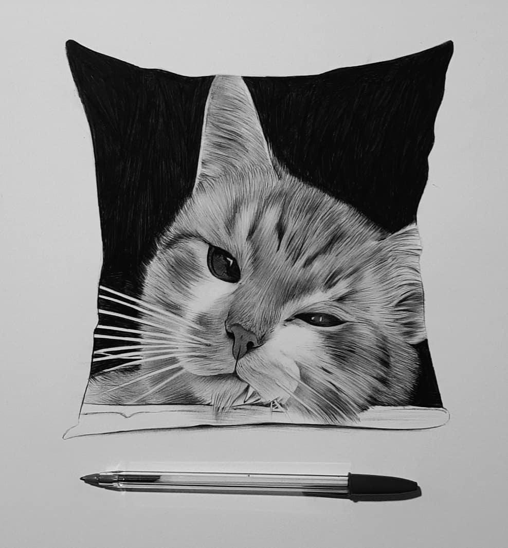 pen drawing cat by hisham albayyat