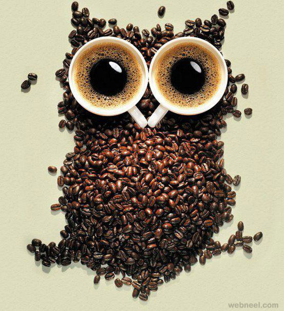 coffee beans owl