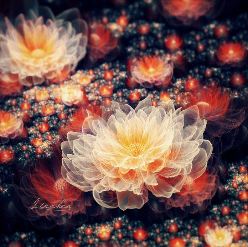 10-flower-digital-art-by-fractist