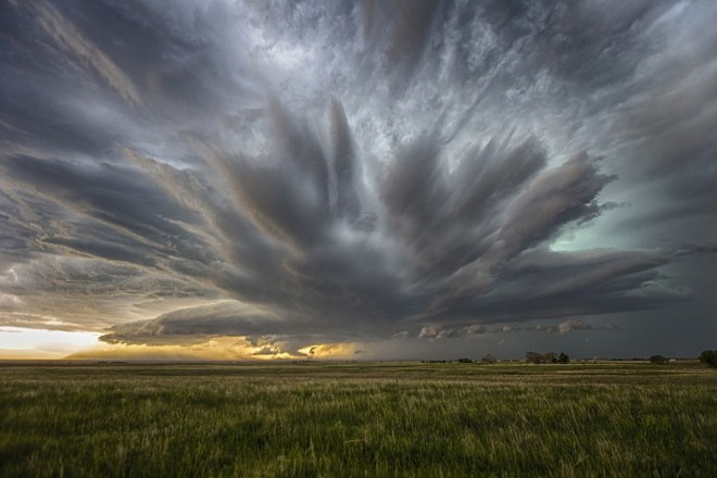 5-national-geographic-nature-photographer-by-ryan-wunsch