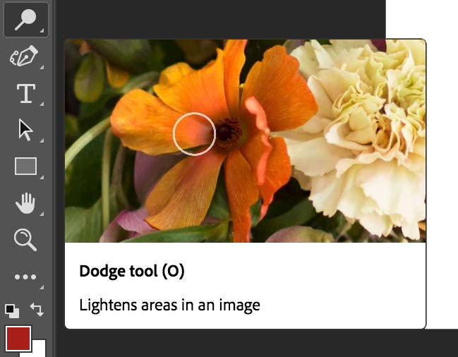 dodge tool adobe photoshop