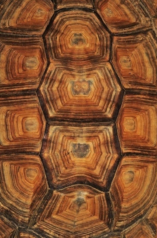7-pattern-digital-art