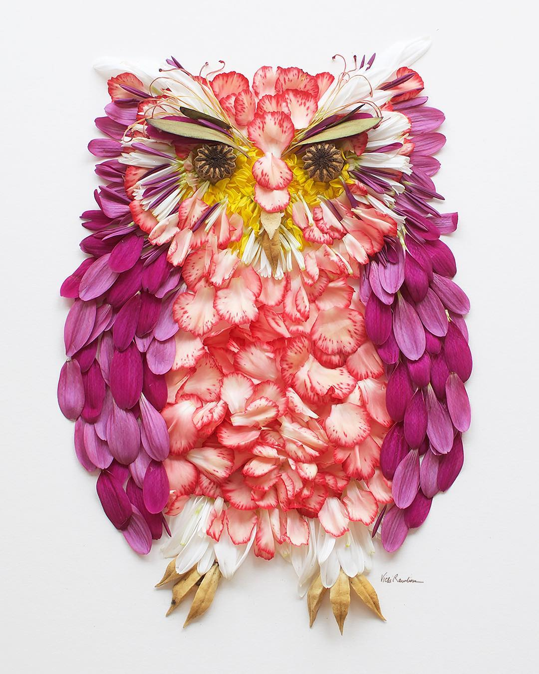 owl flower art portrait by vicky brooke
