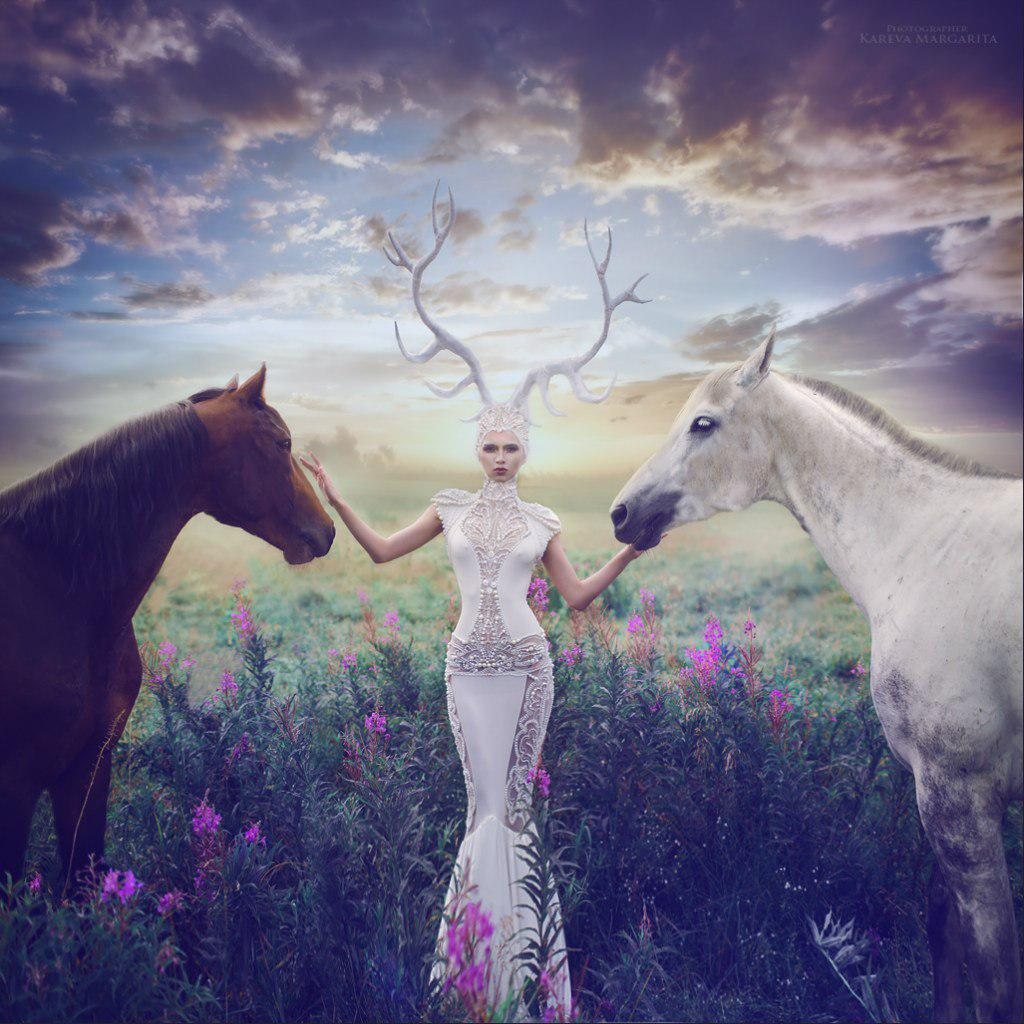 fantasy photography horses