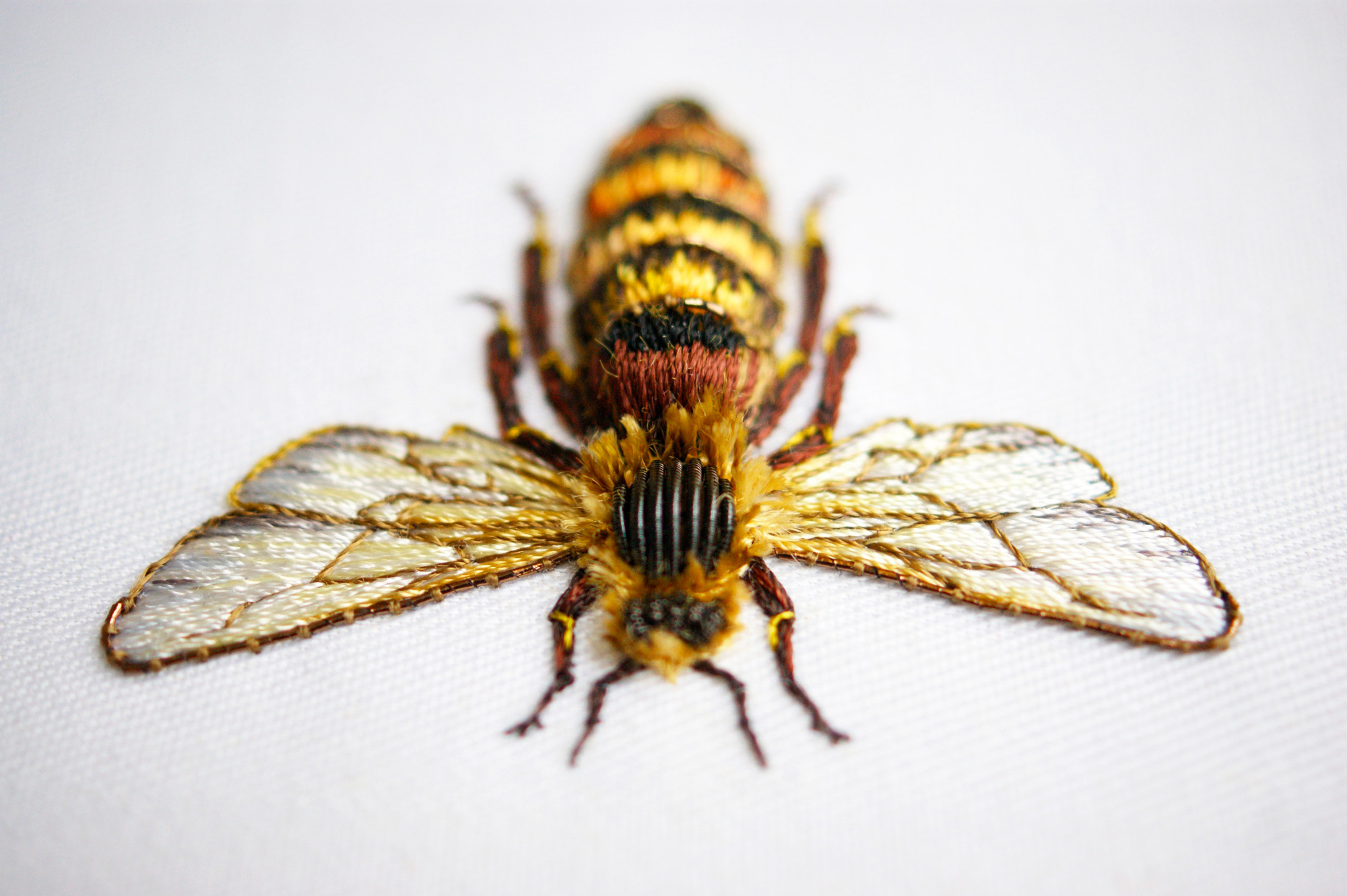 hand embroidery insect by laura baverstock