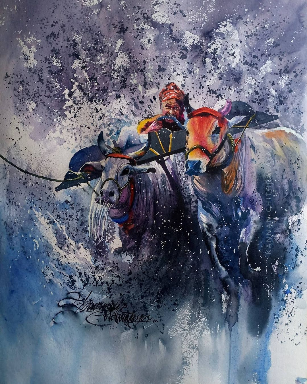 watercolor painting kambala by kannan chitralaya