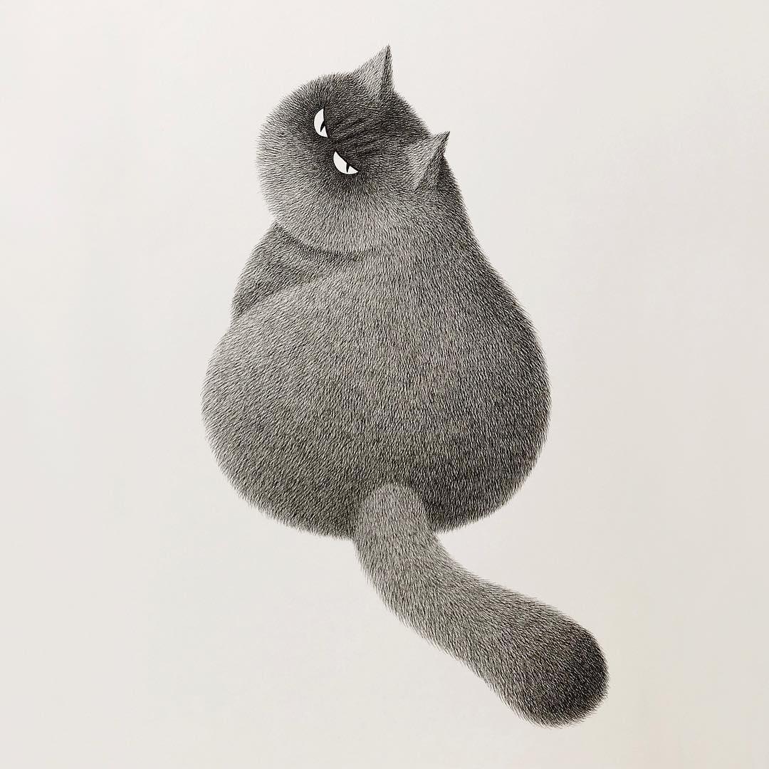 cat pencil drawing by kamwei fong