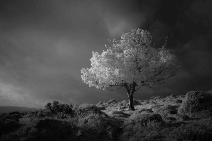 landscape photography award winning photo fantasy by neil burnell
