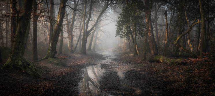 landscape photography award winning photo roman road by leigh dorey