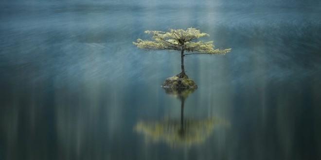 best panoramic photography by adam gibbs