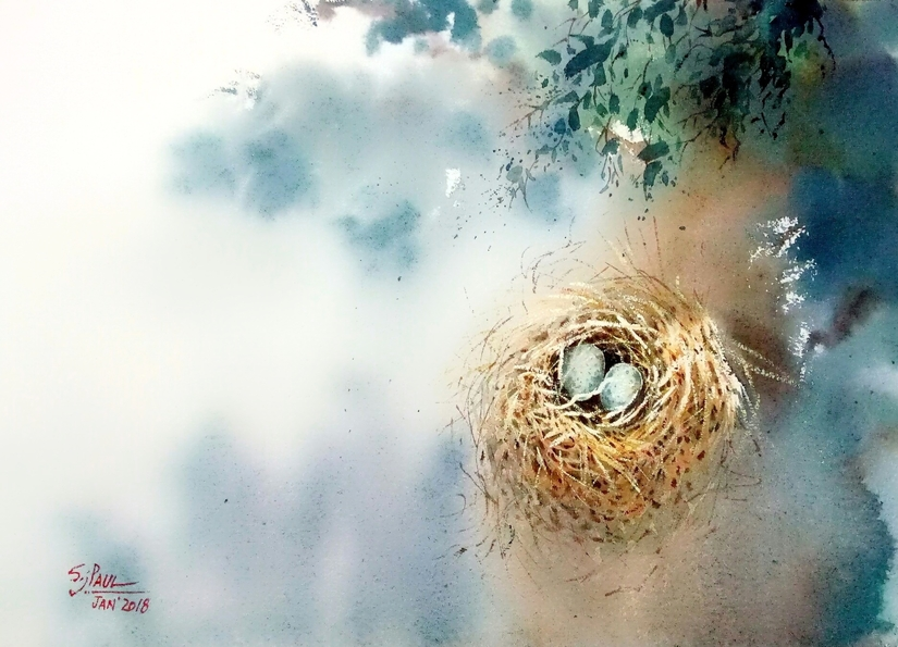water color painting nest and egg by subhajit paul